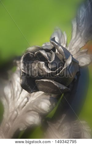 iron rose on a green background creativity lifestyles