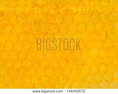 Yellow Honeycomb Cells Under Fresh Honey