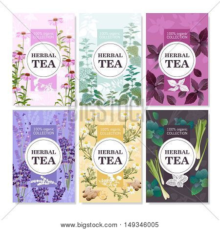 Collection of spices and meadow flowers for organic tea colored cards with title vector illustration