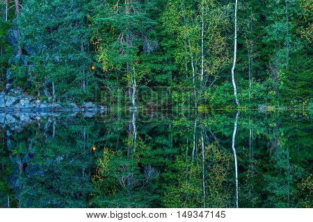 Reflection of autumnal forest landscape and campfire in water