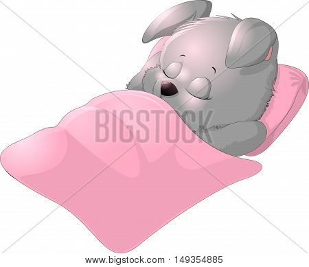 Sleep cute bunny on a white background
