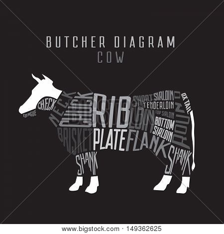Cow butcher diagram. Cut of beef set. Typographic vintage vector illustration