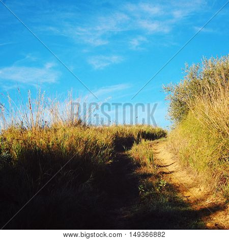 Country road up the hill. Rural landscape with dry grass and blue sky. Countryside way in a sunny day.