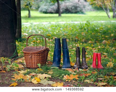 Shopping and three pairs of boots in the autumn forest. Boots for women children and men. The concept - a family joint trips. Lifestyle autumn