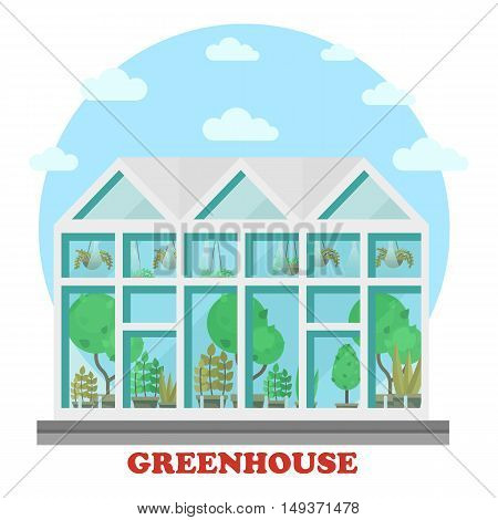 Glass greenhouse with plant in pot and tree. Side view of house or building for growing natural food and vegetables. Great for botany and vegetarian, organic and eco, healthcare theme