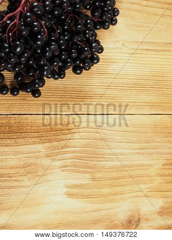 Sambucus nigra - Elderberry on the wooden background