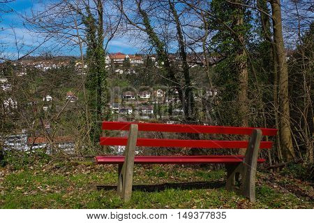 a wooden green park bench under trees in the forest