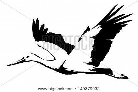 black and white paint draw crane bird illustration