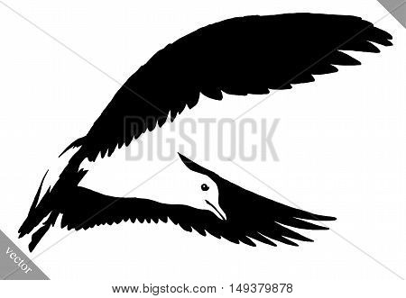 black and white linear paint draw Seagull bird vector illustration