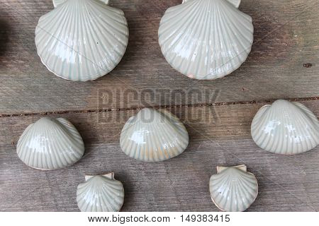 white clay scallop shells against a plain wooden background