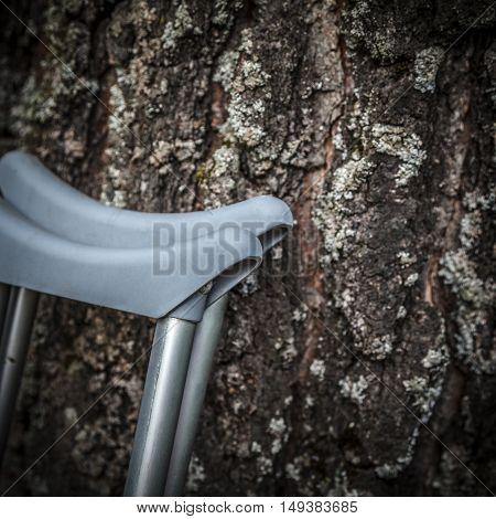 A pair of grey crutches near Birch trunk