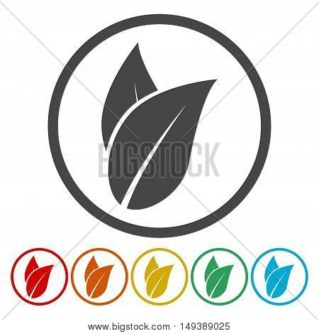 Ecology icon. Vector leaf icon on white background