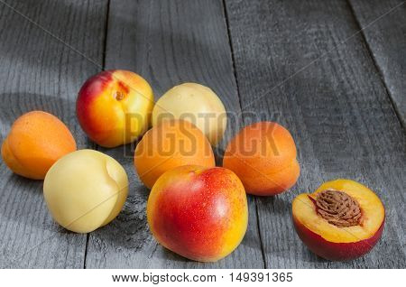 Southern fruit, apricots and nectarines on a gray wooden background