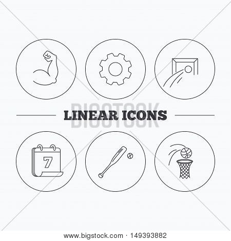Baseball, football and basketball icons. Biceps linear sign. Flat cogwheel and calendar symbols. Linear icons in circle buttons. Vector