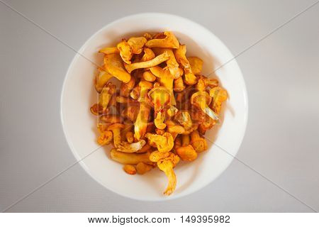 Delicious Chanterelle Mushrooms