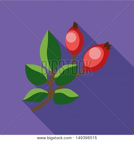 Rosehip branch with red berries icon in flat style isolated with long shadow vector illustration