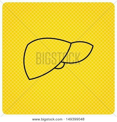 Liver icon. Transplantation organ sign. Medical hepathology symbol. Linear icon on orange background. Vector