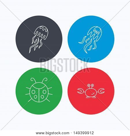 Jellyfish, crab and ladybug icons. Ladybird linear sign. Linear icons on colored buttons. Flat web symbols. Vector