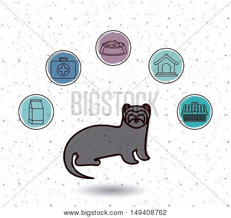Ferret and icon set. Animal pet and nature theme. White and texture background. Vector illustration