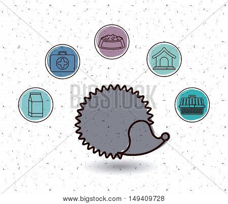 Porcupine and icon set. Animal pet and nature theme. White and texture background. Vector illustration