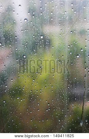 Glass window with raindrops running down on a bleak rainy day with defocused trees in the background.