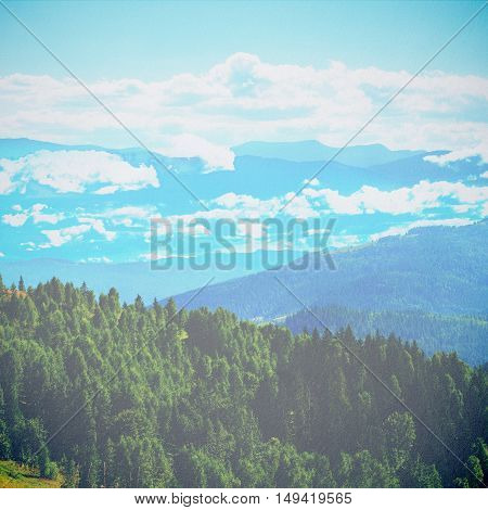 Fairy Tale Forest In Retro Style. Paper Vintage Textured. Mountain Landscape, Nature Background