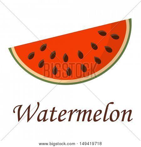 Watermelon slice vector illustration.