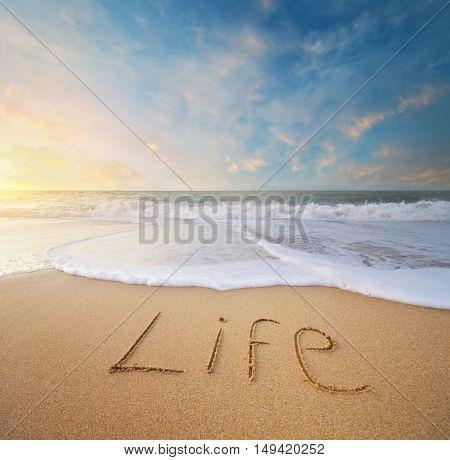 Life word on the sea sand. Conceptual nature design.