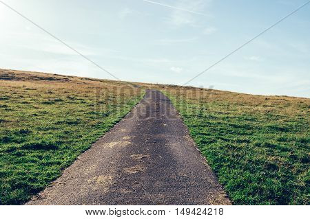 Country road crosses the green meadow in the hill at sunset