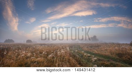 Blue Sky With Clouds Over Meadow In Misty Morning