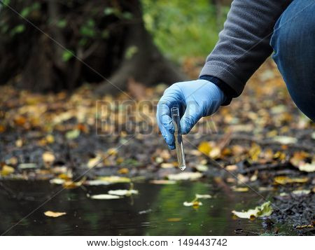 Water Sample. Hand In Glove Collects Water From A Puddle In A Test Tube. Analysis Of Water Purity, E