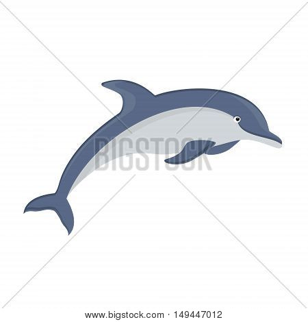 Vector illustration jumping dolphin isolated on white background. Dolphin icon. Sea creature