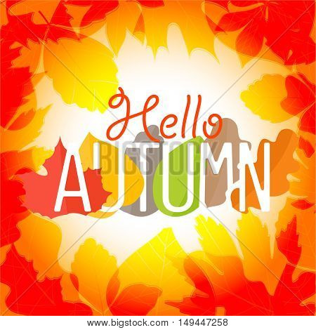 Hello autumn logo. Color leaves season vector concept