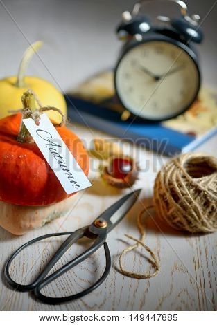 still life with pumpkins, scissor and rope