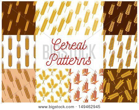 Cereal seamless patterns. Vector pattern of wheat, barley, rye ears, grain plants for bread product packaging, bakery decoration element