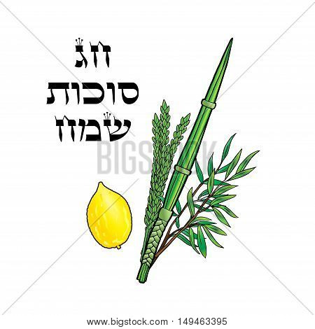 Happy Sukkot background. Hebrew translate: Happy Sukkot Holiday. Jewish traditional four species for Jewish Holiday Sukkot. Vector illustration.