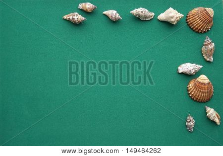 Sea shells on a rough green blue paper background. Photo frame template.