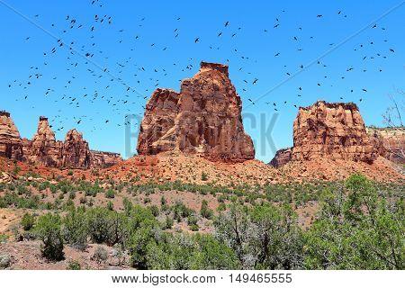 Colorado National Monument, Usa