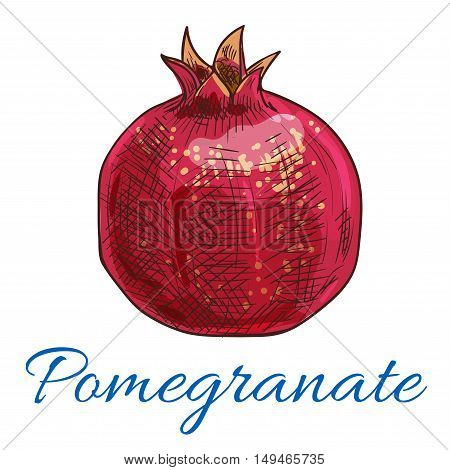 Pomegranate. Isolated fruit product emblem for juice or jam label, packaging sticker, grocery shop tag, farm store
