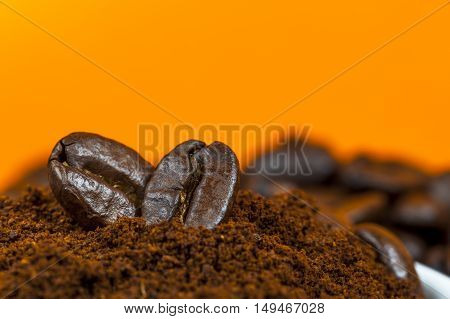 Coffee beans and ground coffee on orange background.