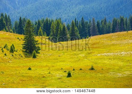 Landscape Of Transalpina Road In Parang Mountains, Romania