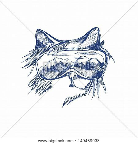 Graphic Poster With Hand Drawn Cat Snowboarder With  Glasses. Vector Illustration