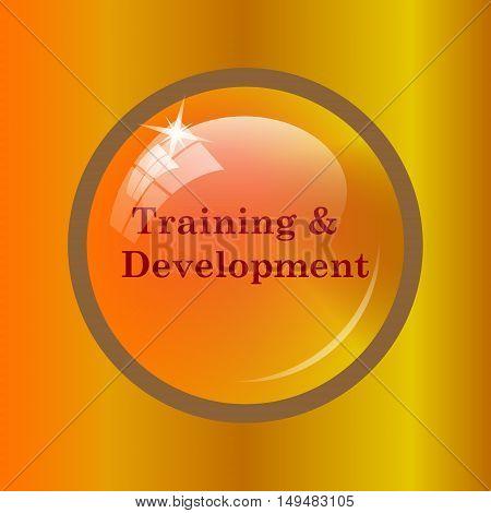 Training And Development Icon