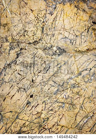 abstract background or texture chaotic quartz veins in limestone