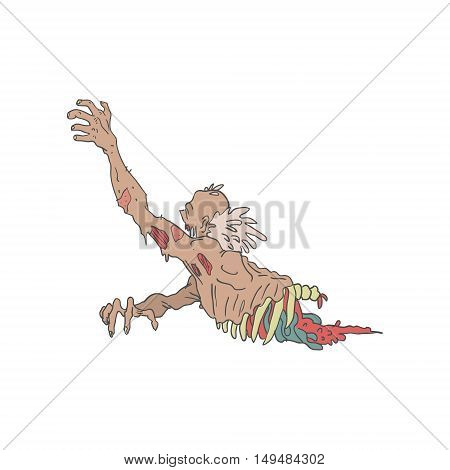 Half Bod Creepy Zombie Dragging Intestines With Rotting Flesh Outlined Hand Drawn Adult Style Illustration Isolated On White Background