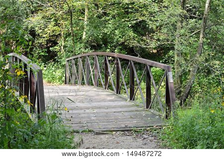 A bridge over the river in the woods