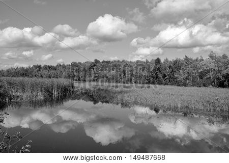 Black and white early fall landscape eastern township Bromont, Quebec, canada