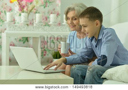 Portrait of grandmother and boy with laptop in the room