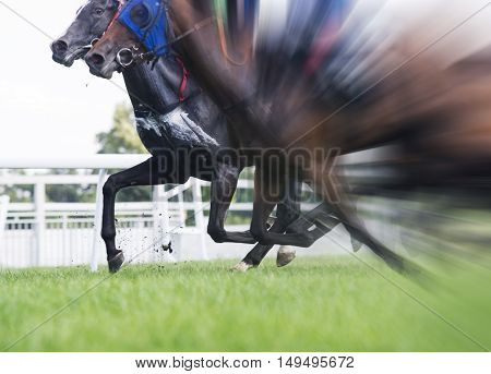 horse racing selective focus and blurred radial