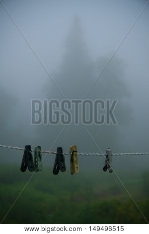 misty morning in the forest and an outstretched rope on which hang clothespins with wood on a back background the plan